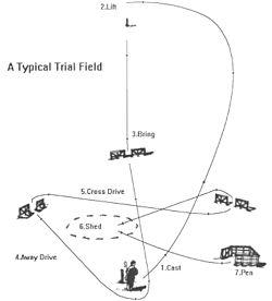 250px-Trialfield
